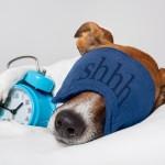 5 grote misverstanden over slaap
